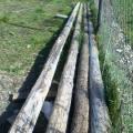 vendo solo 2 troncos de 7 mt.de largo  $500 c/u o los 2 $800 -cel. 154417845-El Hoyo